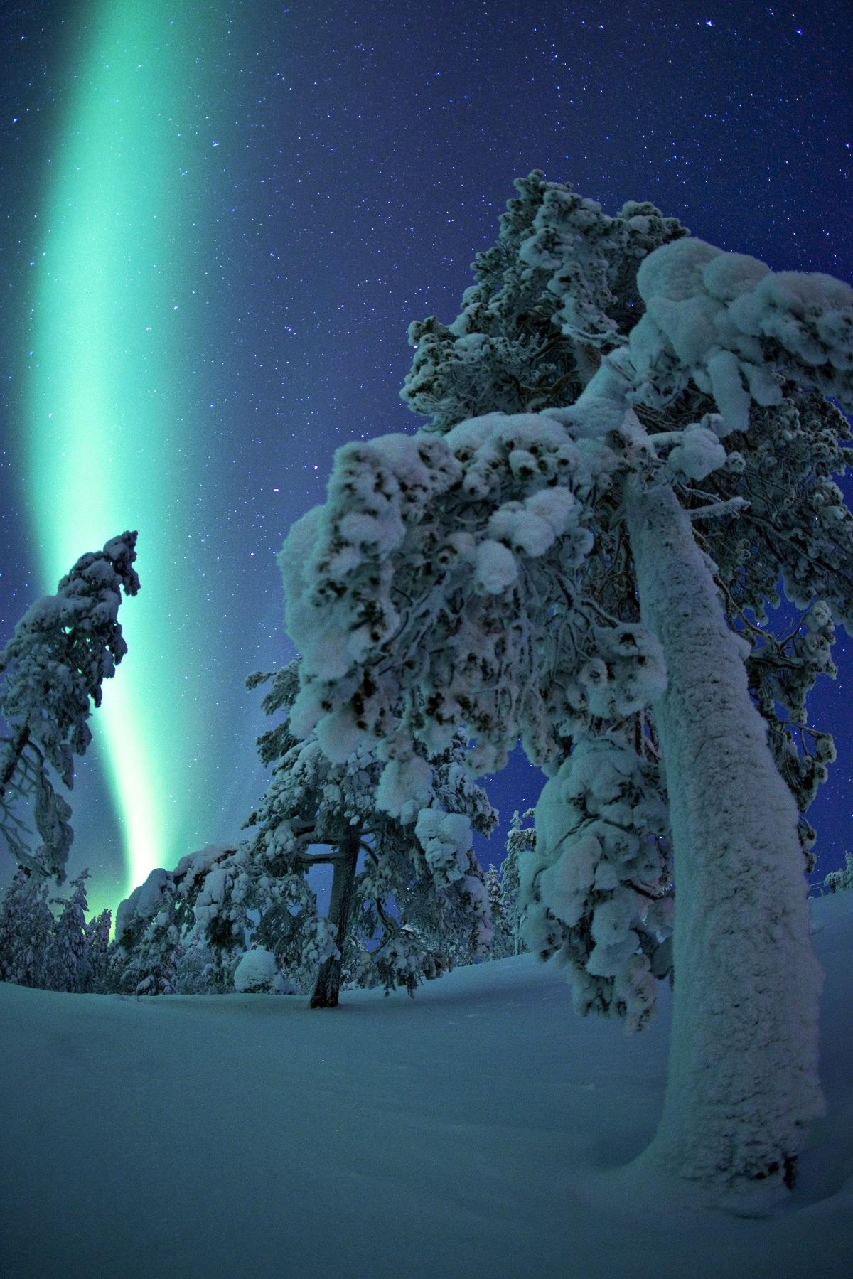 Laponia Aurora boreal